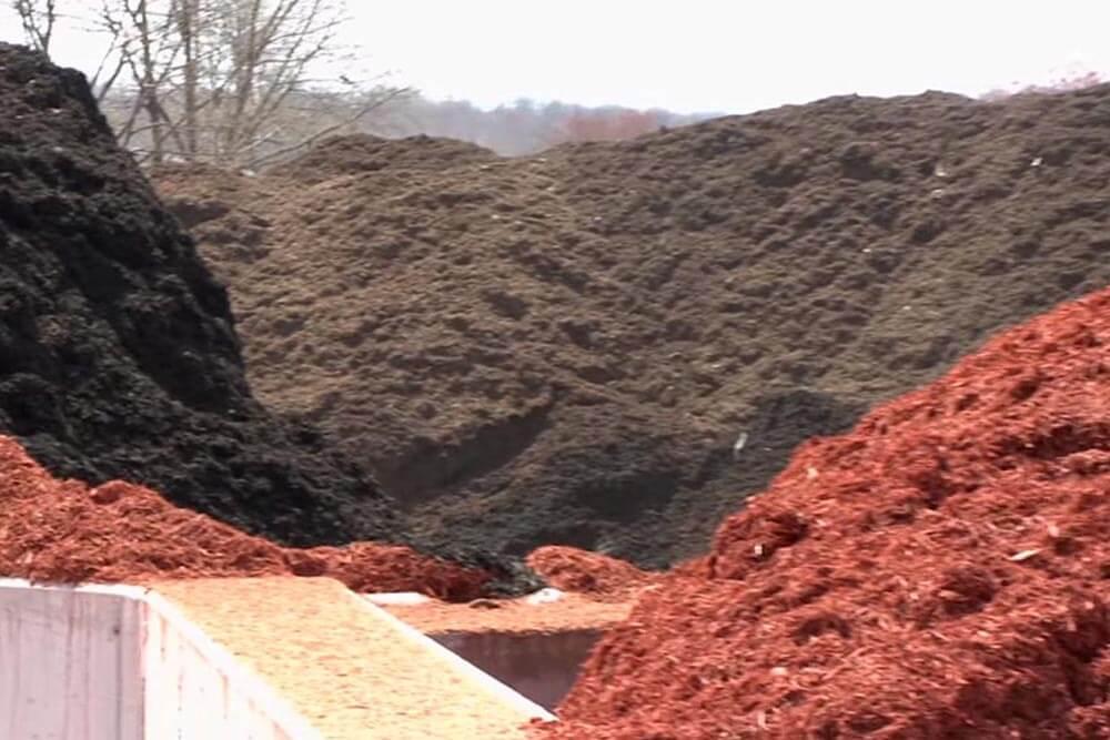 mulch grinder piles